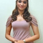 Tamannaah Bhatia Body Stats Height Weight Age Bra Size Affairs Favorite Things