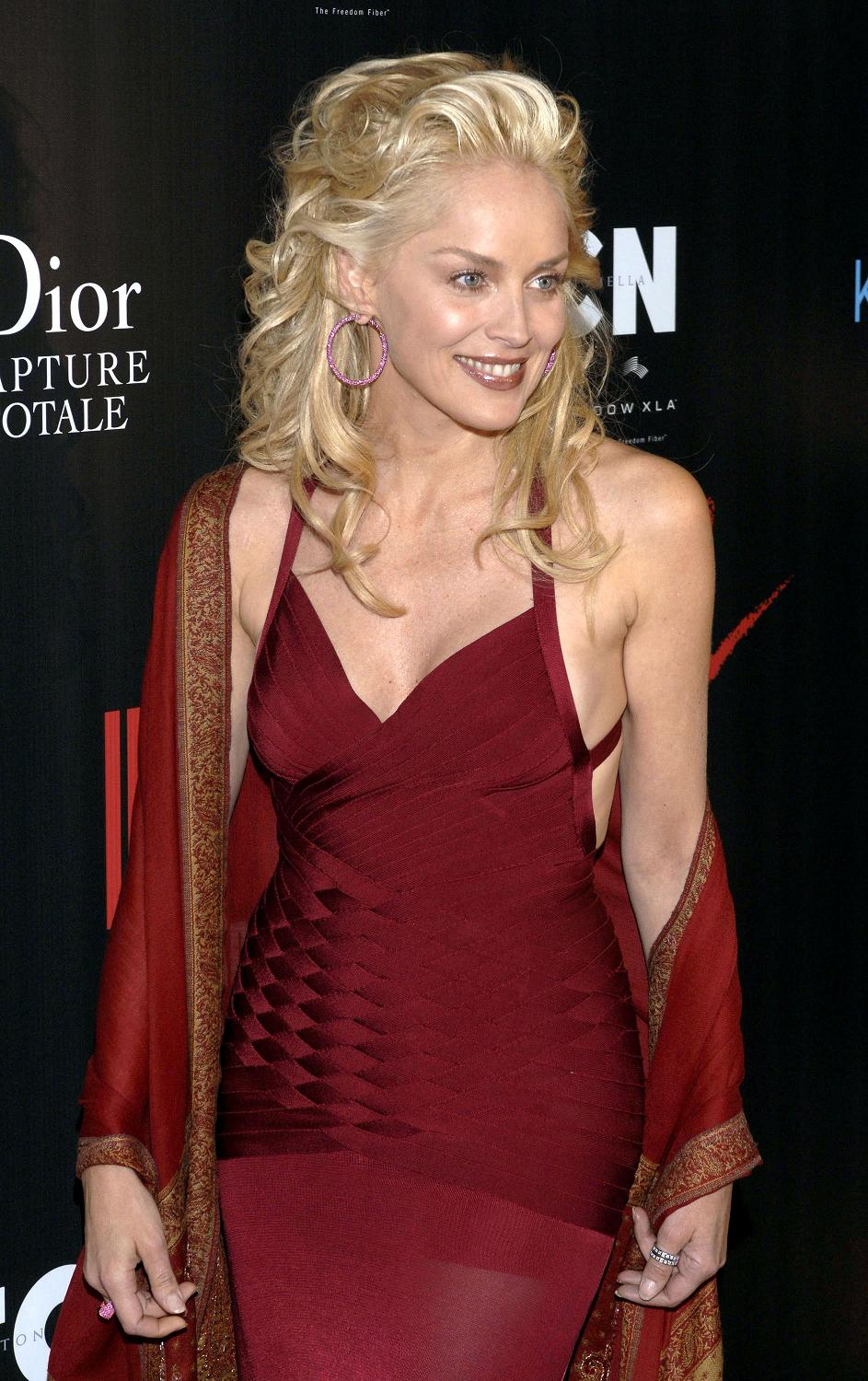 Sharon Stone Height Weight Age Bra Size Body Stats Affairs Boy Friends Details