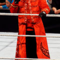 WWE Sting Wiki Age Height Triceps Biceps Size Affair Body Measurement Bio